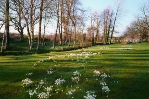 Best walks in Dorset