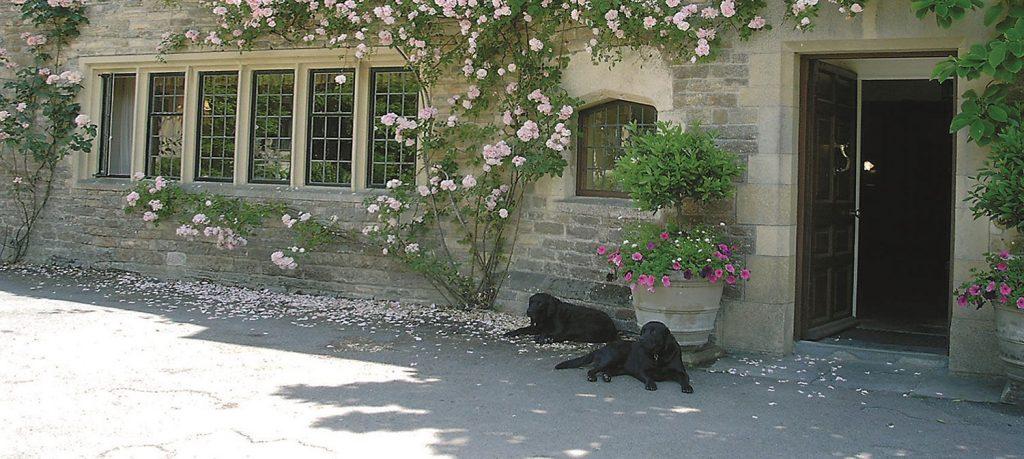 Dog Friendly Hotel Dorset Dorset Dog Friendly Hotel Plumber Manor